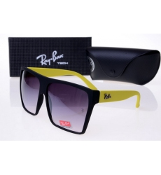 Ray-ban Glasses-1484